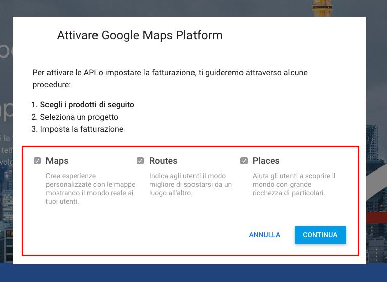 Selezione servizi google maps